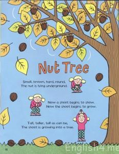 Nut Tree Action Rhyme J. Donaldson